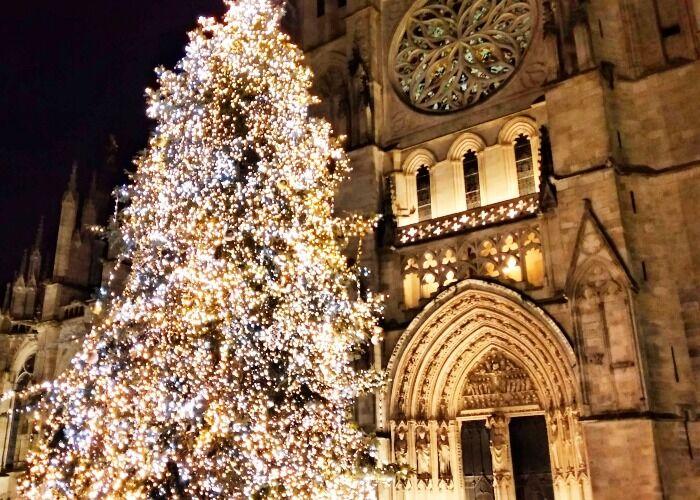Puedes encontrar luces y árboles en cada rincón de la ciudad de Burdeos durante las navidades